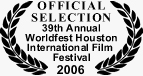the eyes of van gogh houston intl film festival